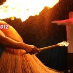 Carnaval Estocolmo 2012 - Pictures by Mario Trajer