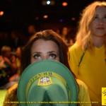 Bilder från festen på Debaser Strand: Brasilien–Mexiko 17/6
