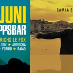 BAR BRASIL goes Skeppsbaren Friday June 5th