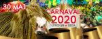 Carnaval de Estocolmo / Stockholm Carnival 30 maj 2020
